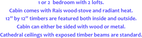 1 or 2  bedroom with 2 lofts.   